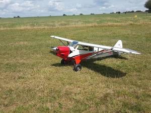Xcub Hangar 9 +DLE 61